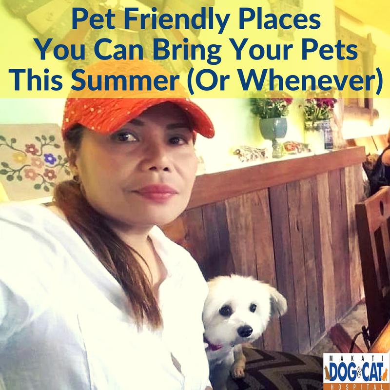 pet friendly places in metro manila