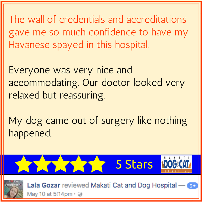 makati dog and cat hospital reviews