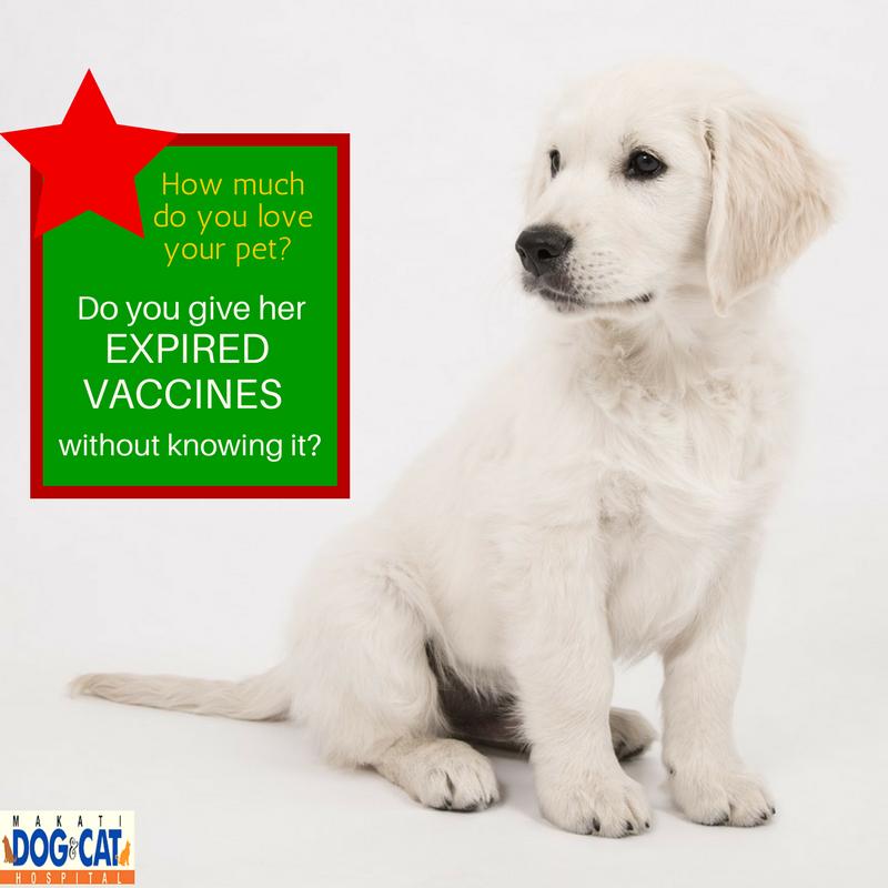 expired pet vaccines philippines