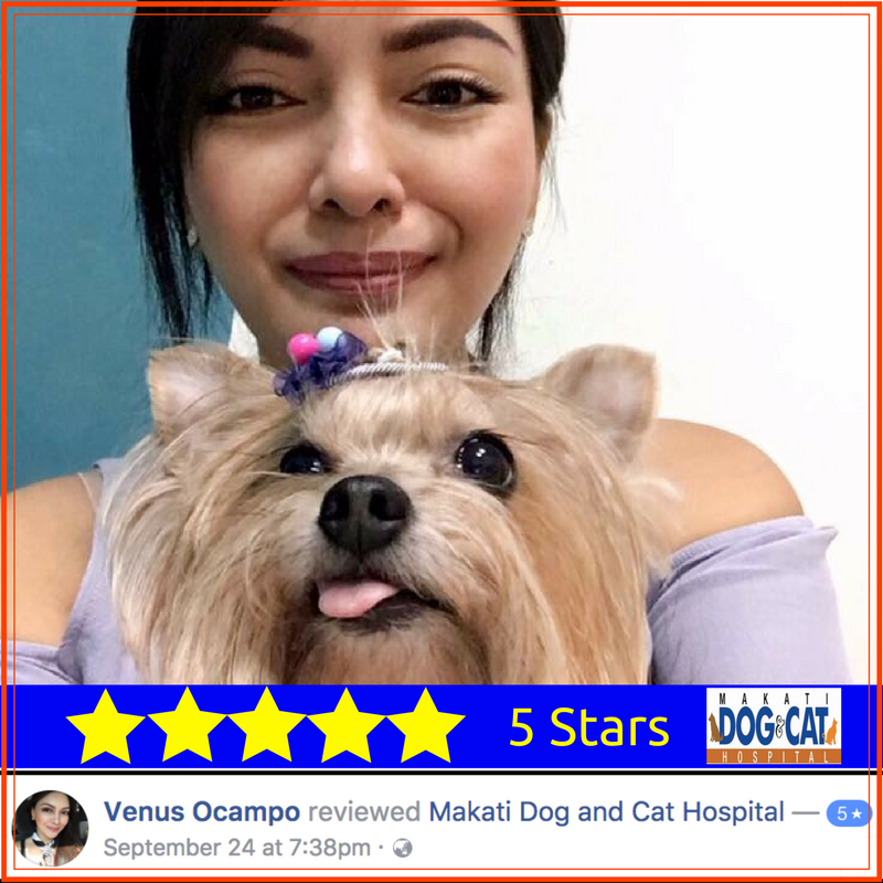 makati dog and cat hospital review